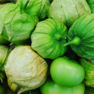 Tomatillo Verde LDF