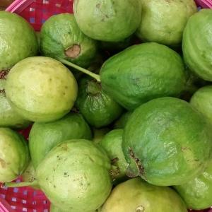 Guayaba fresca en formato de 1Kg