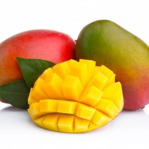 mango web