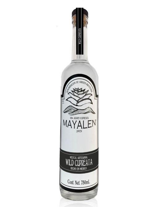 mayalen-wild-cupreata-1